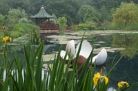 The Himalayan Garden & Sculpture Park in Grewelthorpe